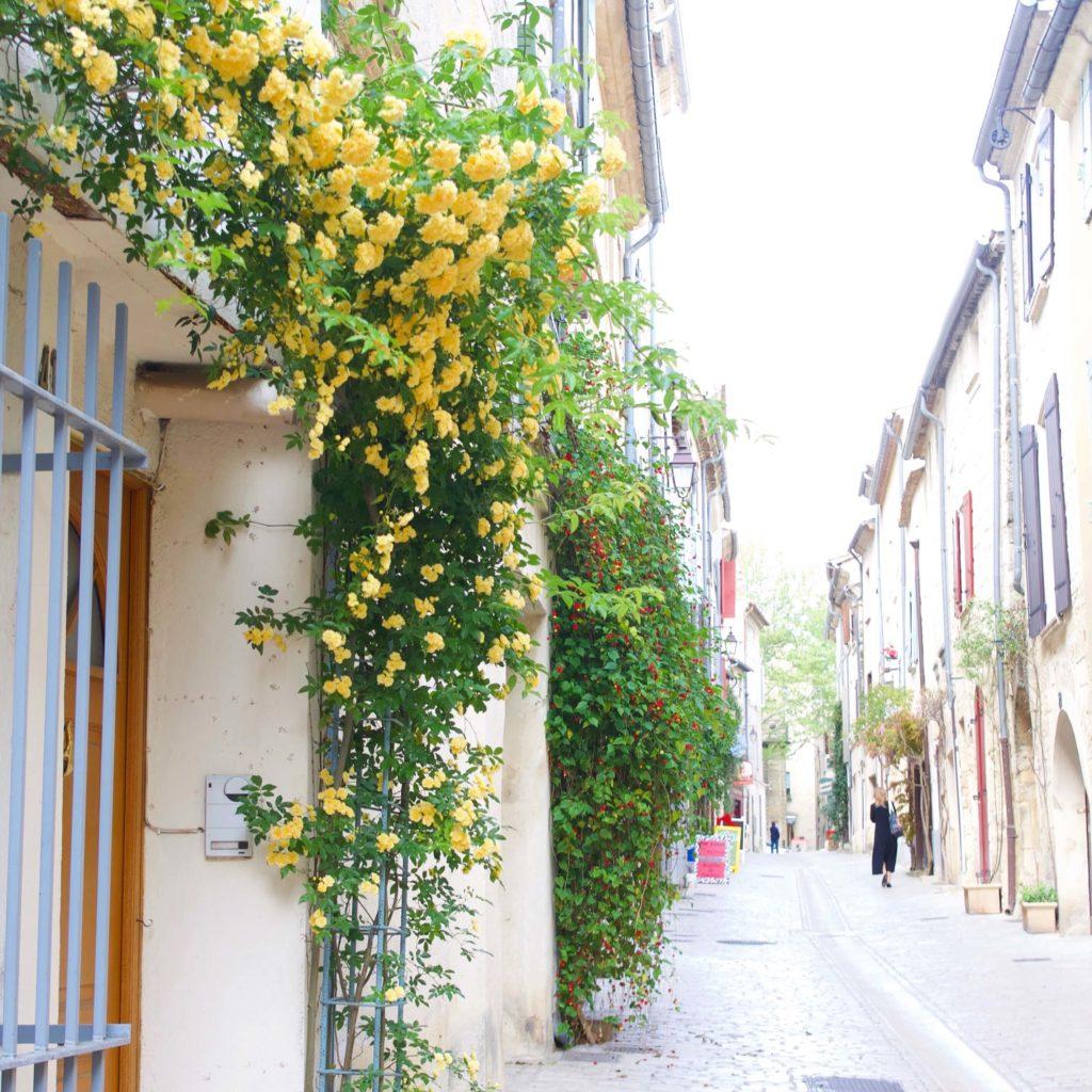 花とフランスの街並み
